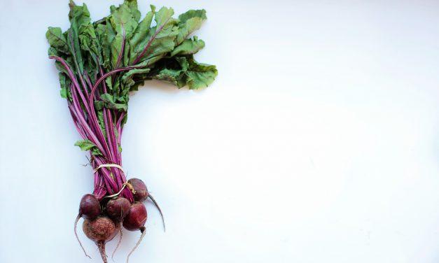 Essen als Statussymbol oderals Voraussetzung für Familienzeit?