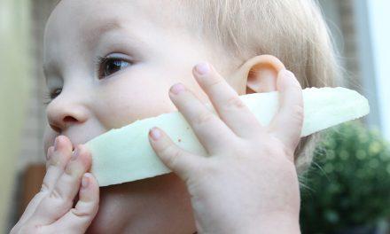 4 wichtige Tipps, die du beim Zufüttern beachten solltest!