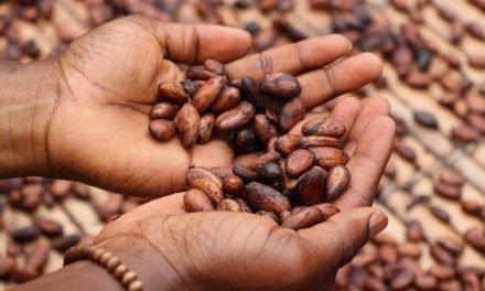 RITTER SPORT: Appetit auf nachhaltige Schokolade