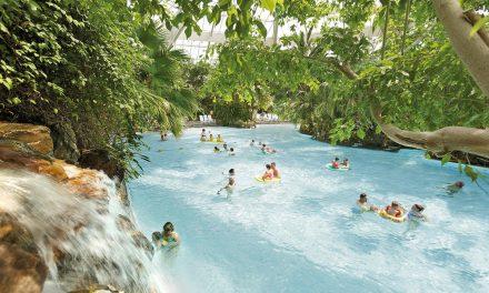 Ferienparks: Voll im Trend