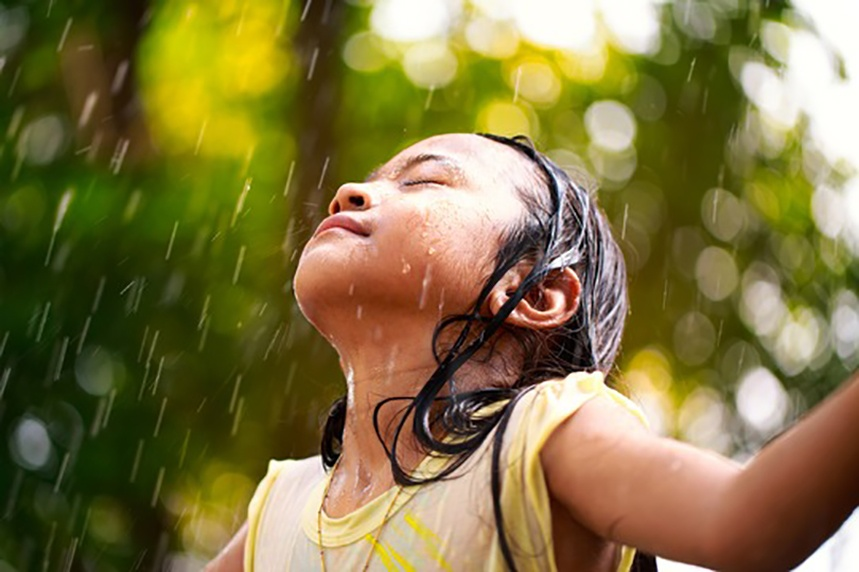 Wetter: Können wir Regen riechen?