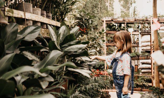 Must-haves: Exklusive Gartenmöbel
