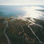 Niederländische Nationalparks: Das solltet ihr nicht verpassen!