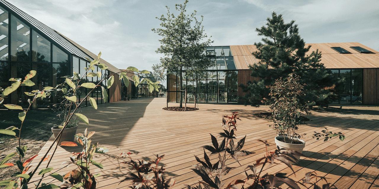 """Nachhaltig urlauben: 5 spektakuläre """"grüne"""" Ferienhäuser"""