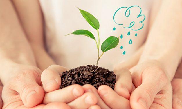 Das Pampers Nachhaltigkeitsversprechen – Gemeinsam für den Planeten und die Babys sorgen, die darauf aufwachsen