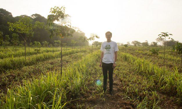 Super starke Nachhaltigkeits-Aktion mit Pampers und Plant-for-the-Planet