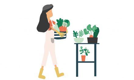 Für Pflanzenliebhaber